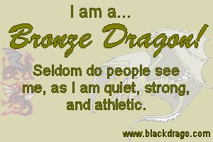 Bronze dragons are quiet, strong, and athletic